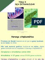 Tema 5 Biogenética
