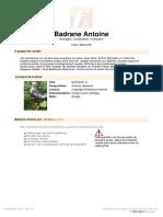 [Free-scores.com]_antoine-badrane-estudio-2-32584