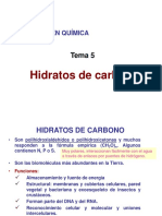 Tema 5 Hidratos de Carbono Add 2021