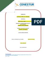 FORMULARIO No. 2 FORMATO INFORME GIRAS ACADEMICAS