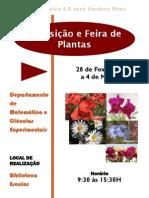 Feira_Plantas