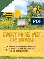 einfach-clever-essen-Unterrichtsmaterial-Kennst_du_die_Welt_der_Bienen