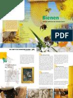 Broschuere Bienen