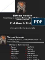Consideracoes_Anatomoclinicas_Medula_TE