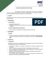 1.02 Anexo 01 - Guía para elaborar, revisar y actualizar una Política HSE