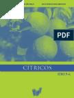 sucos_citricos