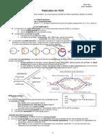 Replication procaryote
