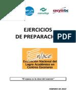 PREPARACION ENLACE 2010