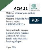 ENSAYO ARIDOAMERICA-1
