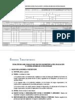 PSST ANEXO 9 FORMATO DEL PROCESO DE IDENTIFICACIÓN