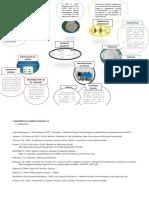 infografia 5