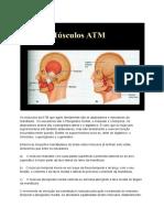 Módulo 3 - Musculatura da ATM (1)