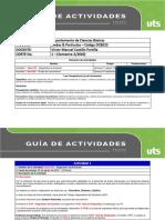 Guía de Actividades 1