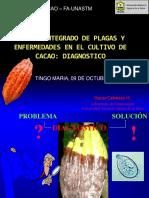 2 Diagnostico de Enfermedades en Cacao_O CABEZAS DIPLO