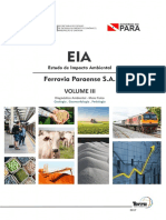 3 EIA Ferrovia Vol.iii