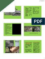 289476591 Clase 10 de Enfermedades en Viveros Forestales