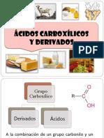 PDF_ Ácidos y derivados