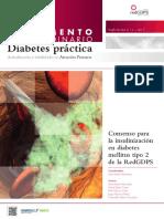 Protocolo insulinización