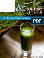 cleanse-detox-minimanual2011