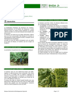 Agricultural Commodity Technical Cards from BNDA_Banane