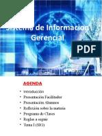 Sistema de Informacion Gerencial (1).Ppsx