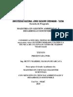 Tesis Maestria-revisión 2021