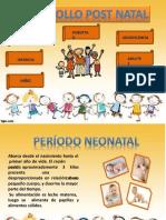 ETAPAS POST NATAL