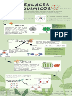 Green Organic Natural Photosynthesis Biology Infographic
