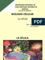 t2 Ingamb Biologia Celular