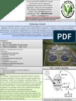 Influence_parametres_sur_degradation_photocatalytique_heterogene_des polluants_organique_dans_les_eaux_usees