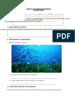 4°-básico-Ciencias-Naturales-Guía-11-María-Fernanda-Vives