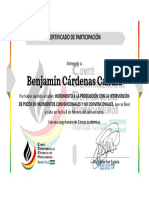 Benjamin Cardenas Candia