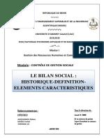 236793898 Le Bilan Social Historique Definition Elements Caracteristiques