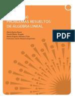 BARBA REYES Mas de 160 Problemas Resueltos de Algebra Lineal