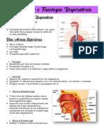 1. Anatomia e Fisiologia Respiratória