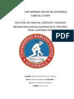 ENSAYO 2 clinica procesal penal pdf