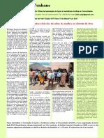 Boletim Informativo Penhane edição 515