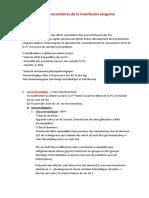Les effets secondaires de la transfusion sanguine dictée 2019