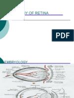 Anatomy of Retina