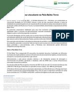 Petrobras 33