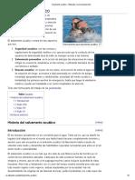 Salvamento Acuático - Wikipedia, La Enciclopedia Libre