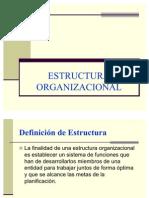 5.ESTRUCTURA ORGANIZACIONAL[1]