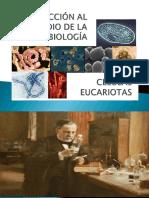 C2_luz_ INTRODUCCIÓN AL ESTUDIO DE LA MICROBIOLOGÍA