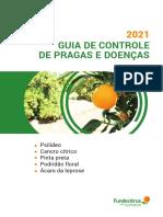 GUIA_DE_CONTROLE_04-03-2021_1
