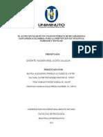 ACTIVIDAD 3 AJUSTES MARCOS DE LA INVESTIGACIÓN