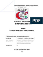 Monografia Celulas Procariota y Eucariota1