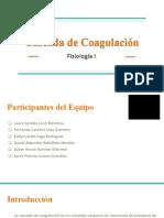 CascadadeCoagulacion-Fisiologia