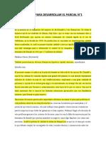 ESTRUCTURA DE ENSAYO PARA DESARROLLAR EL PARCIAL N°1