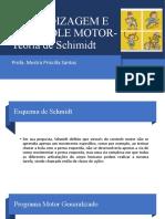 APRENDIZAGEM E CONTROLE MOTOR- Teoria de Schimidt-4na