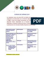 CURSOS DE VERANO 2011
